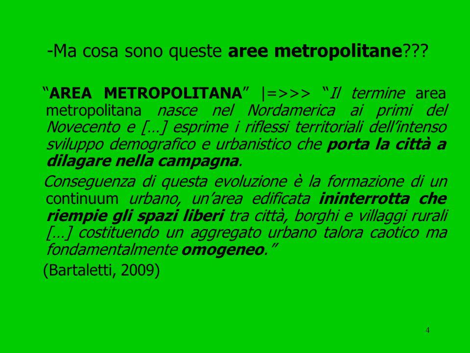 4 -Ma cosa sono queste aree metropolitane .