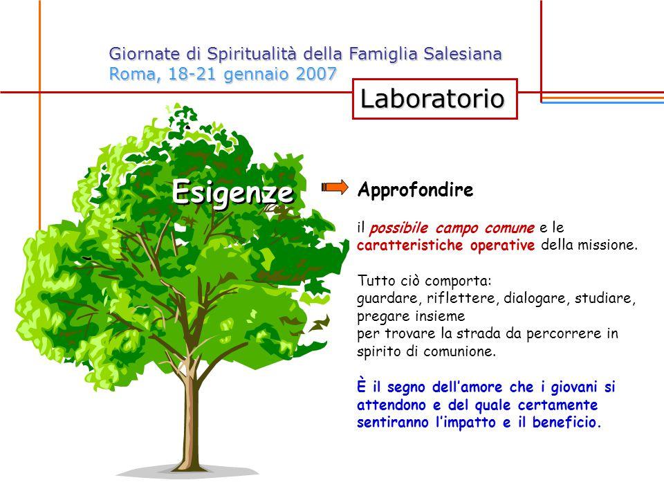 Laboratorio Giornate di Spiritualità della Famiglia Salesiana Roma, 18-21 gennaio 2007 Esigenze Approfondire il possibile campo comune e le caratteristiche operative della missione.