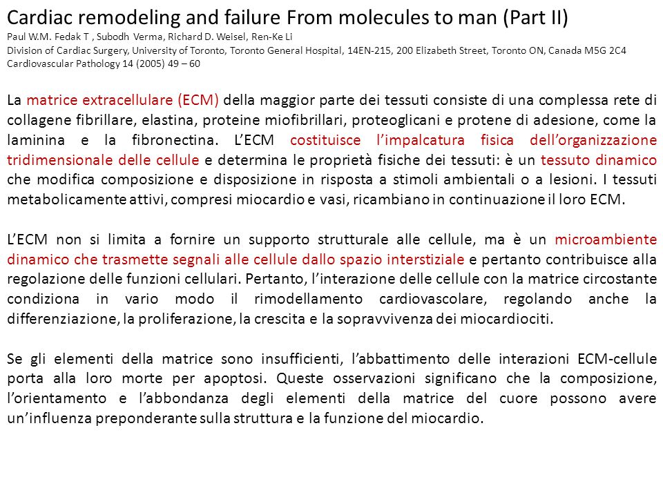 Cardiac remodeling and failure From molecules to man (Part II) Paul W.M.