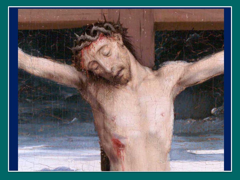 Proseguendo nella profezia sulla sua Pasqua ormai imminente, Gesù usa un'immagine semplice e suggestiva, quella del chicco di grano che, caduto in terra, muore per portare frutto.