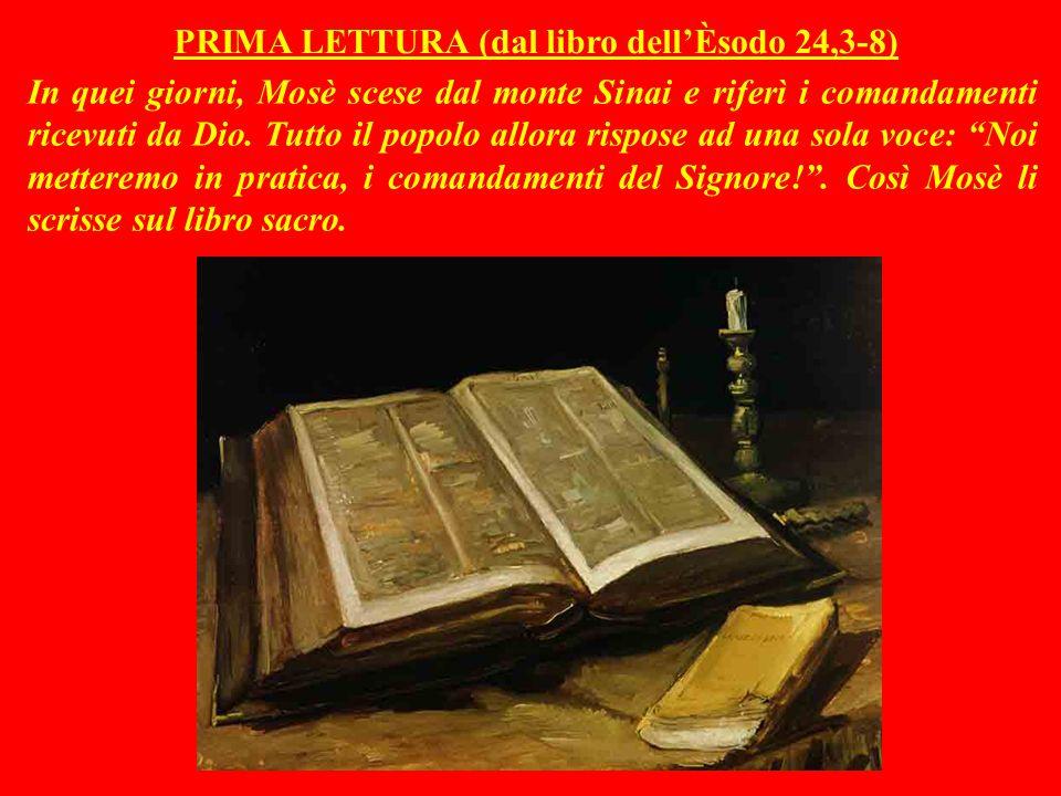 P R E C I S A Z I O N E Queste NON sono le letture originali della Messa : si tratta di mie rielaborazioni, comunque abbastanza aderenti ai testi.