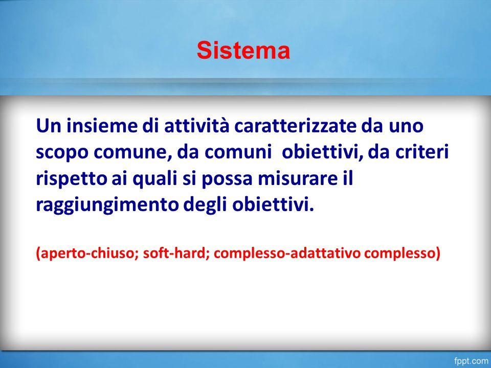 Sistema Un insieme di attività caratterizzate da uno scopo comune, da comuni obiettivi, da criteri rispetto ai quali si possa misurare il raggiungimento degli obiettivi.