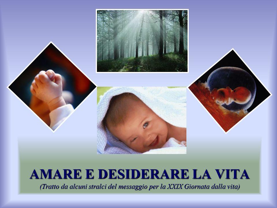 AMARE E DESIDERARE LA VITA (Tratto da alcuni stralci del messaggio per la XXIX Giornata dalla vita)