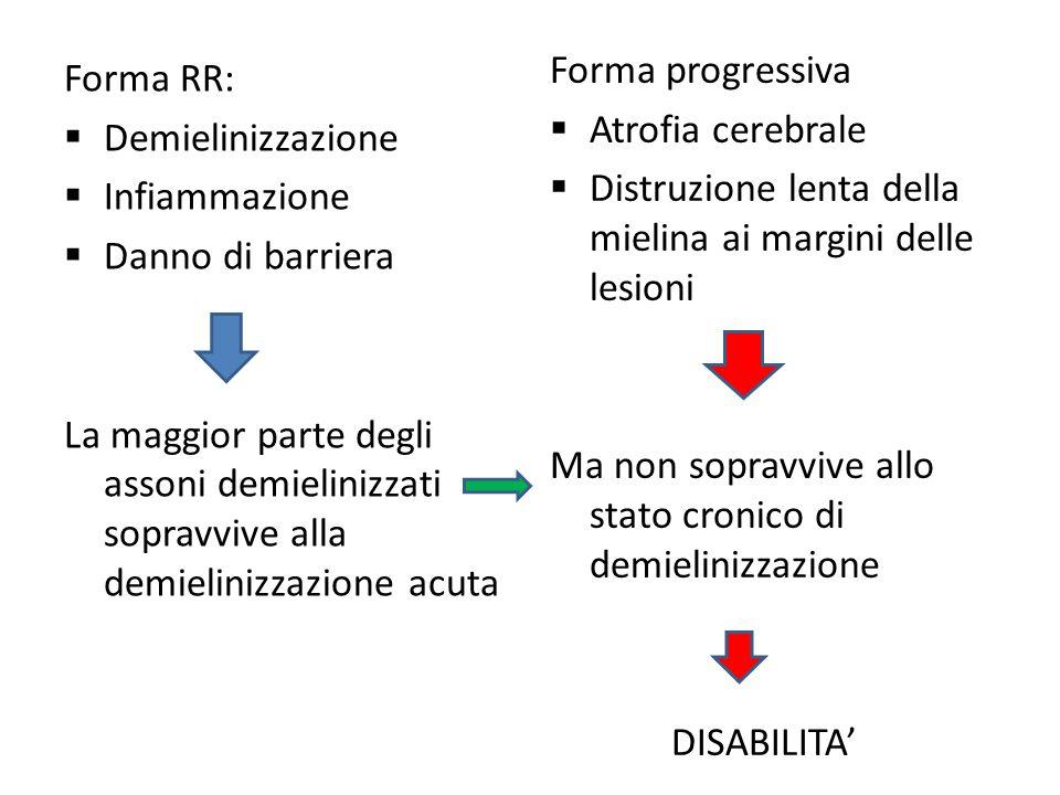Forma RR:  Demielinizzazione  Infiammazione  Danno di barriera La maggior parte degli assoni demielinizzati sopravvive alla demielinizzazione acuta