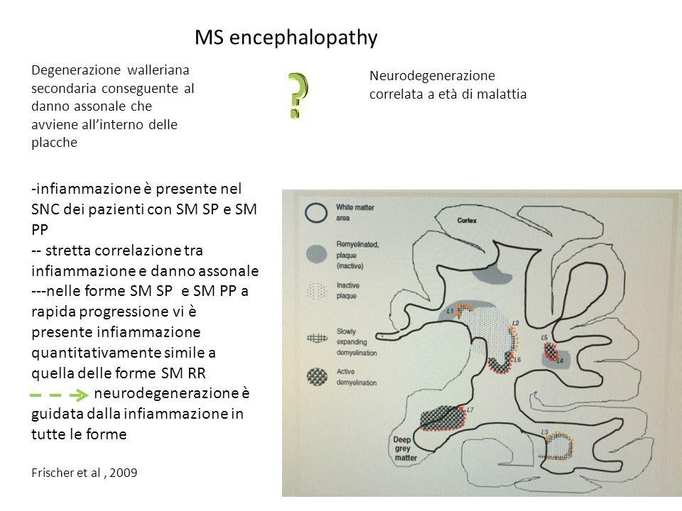 MS encephalopathy Degenerazione walleriana secondaria conseguente al danno assonale che avviene all'interno delle placche Neurodegenerazione correlata