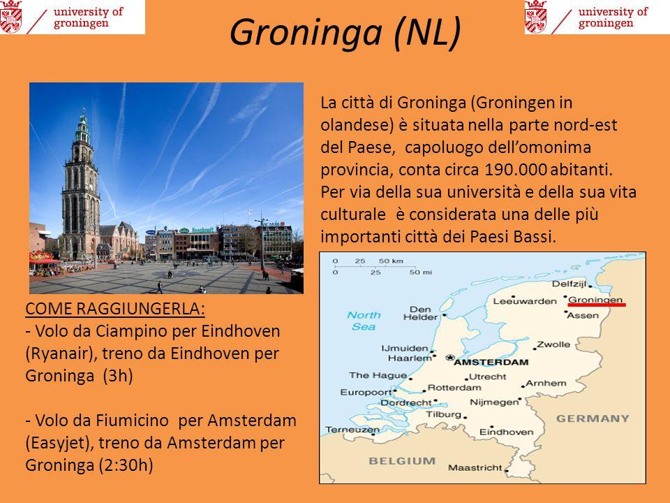 Groninga (NL) La città di Groninga (Groningen in olandese) è situata nella parte nord-est del Paese, capoluogo dell'omonima provincia, conta circa 190