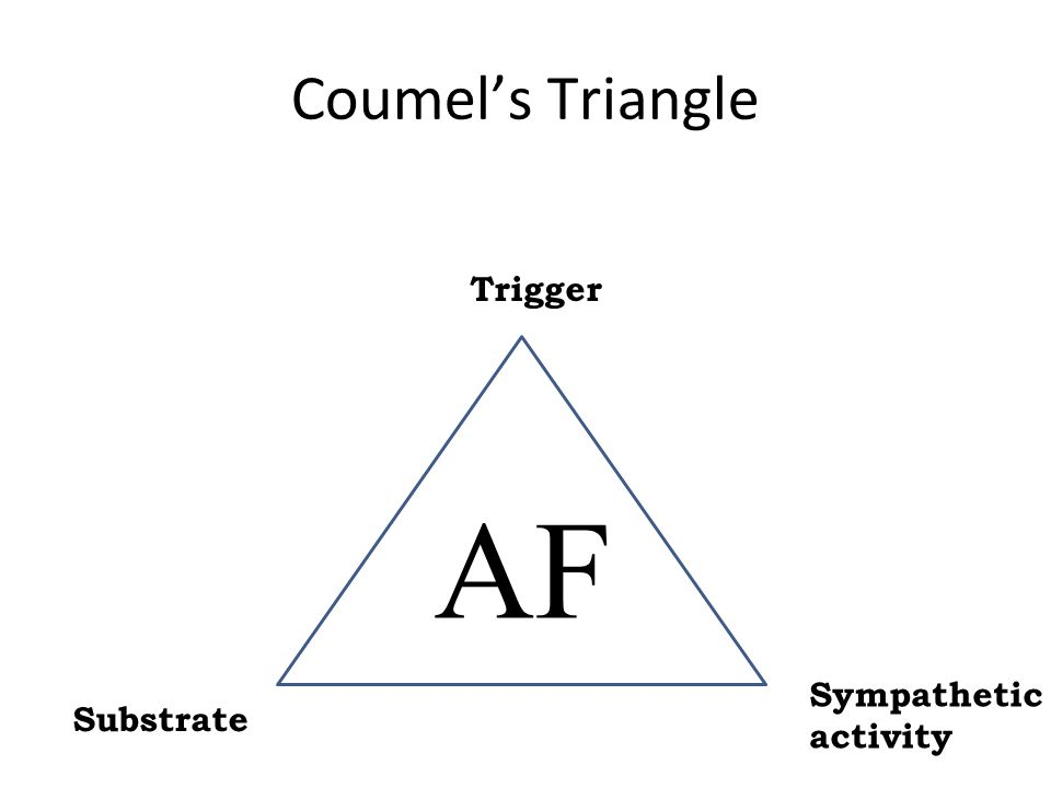 AF Coumel's Triangle Substrate Sympathetic activity Trigger