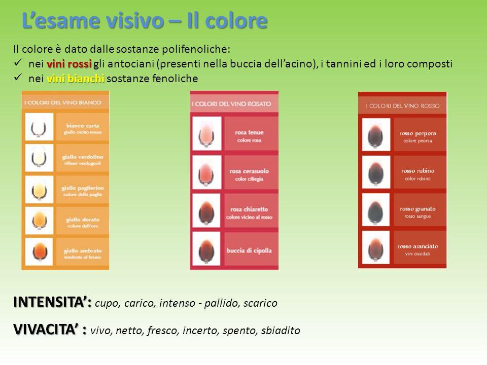 L'esame visivo – Il colore Il colore è dato dalle sostanze polifenoliche: vini rossi nei vini rossi gli antociani (presenti nella buccia dell'acino),