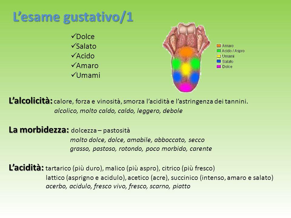 Dolce Salato Acido Amaro Umami L'esame gustativo/1 L'alcolicità: L'alcolicità: calore, forza e vinosità, smorza l'acidità e l'astringenza dei tannini.