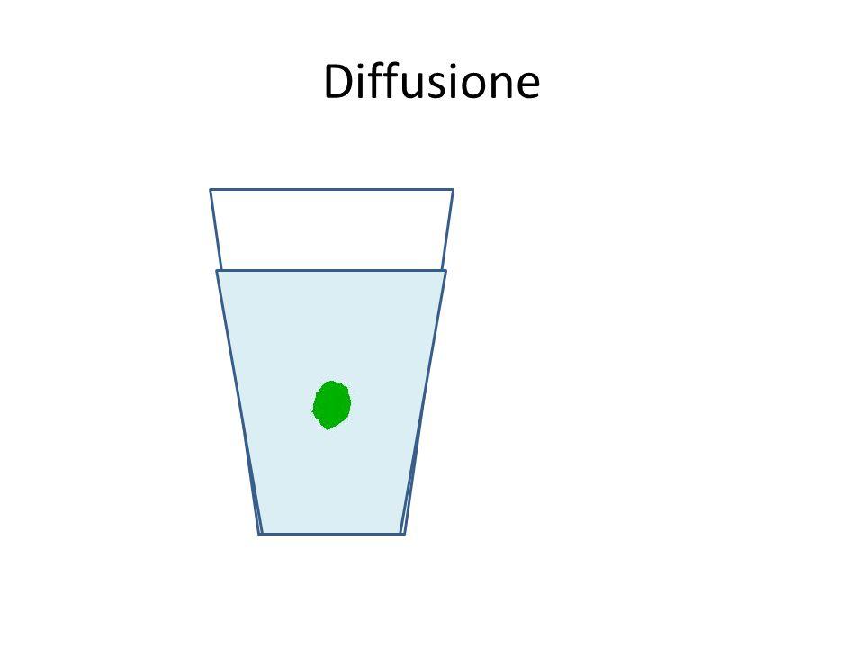 Esocitosi … e la sostanza viene espulsa dalla cellula Esterno Interno