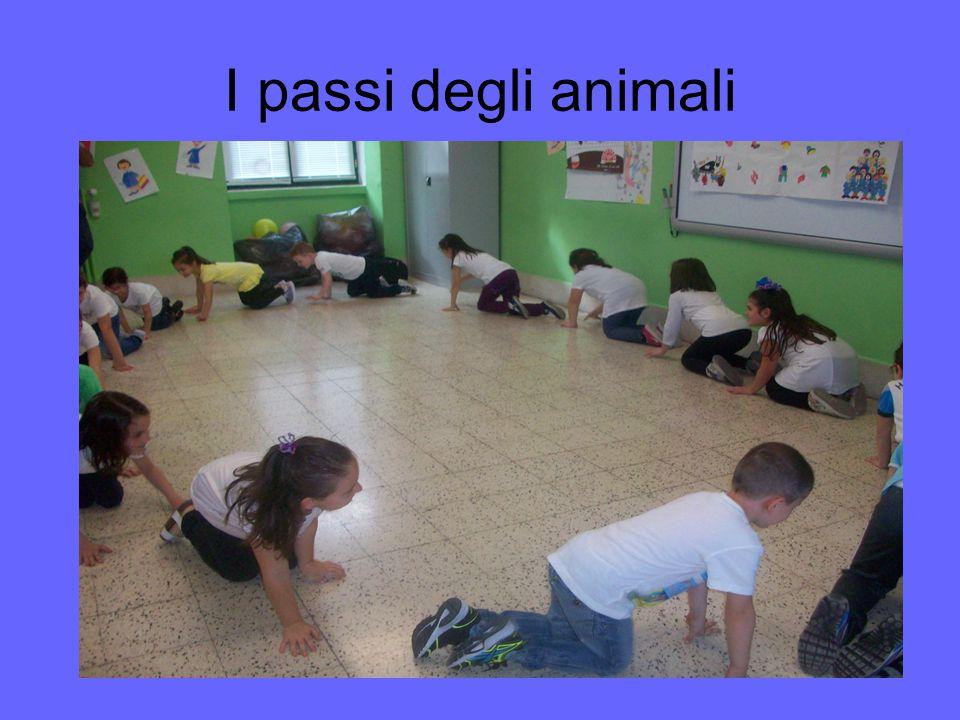 I passi degli animali