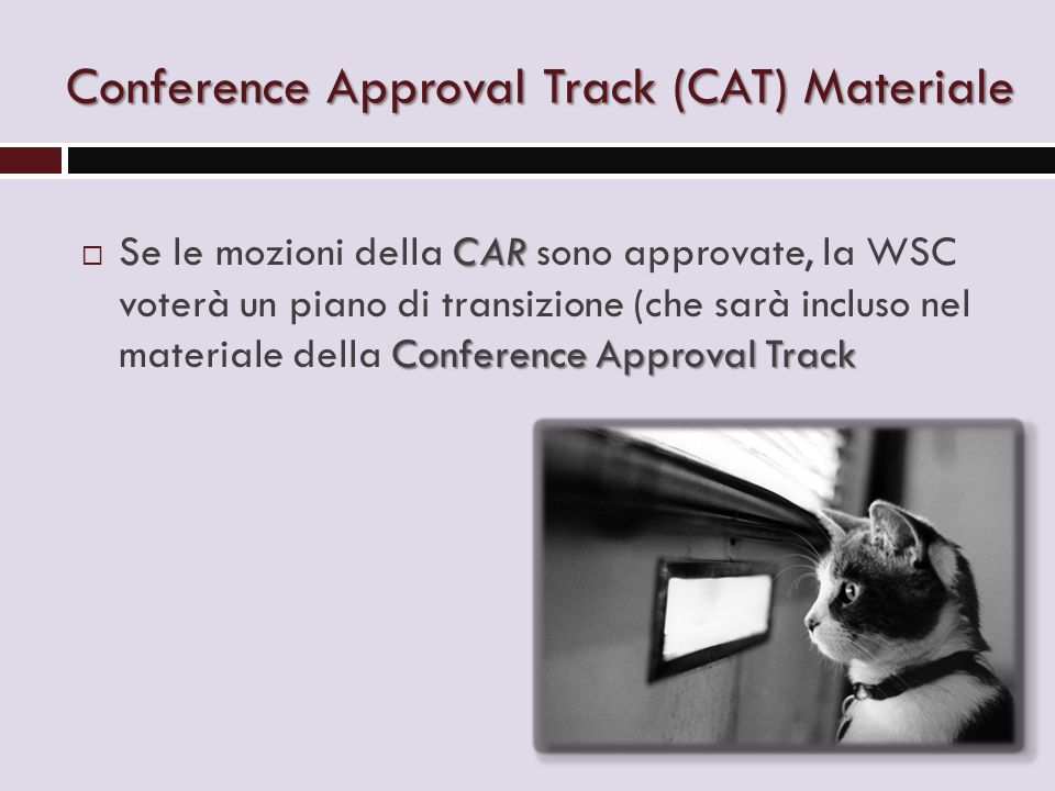 Conference Approval Track (CAT) Materiale CAR Conference Approval Track  Se le mozioni della CAR sono approvate, la WSC voterà un piano di transizion