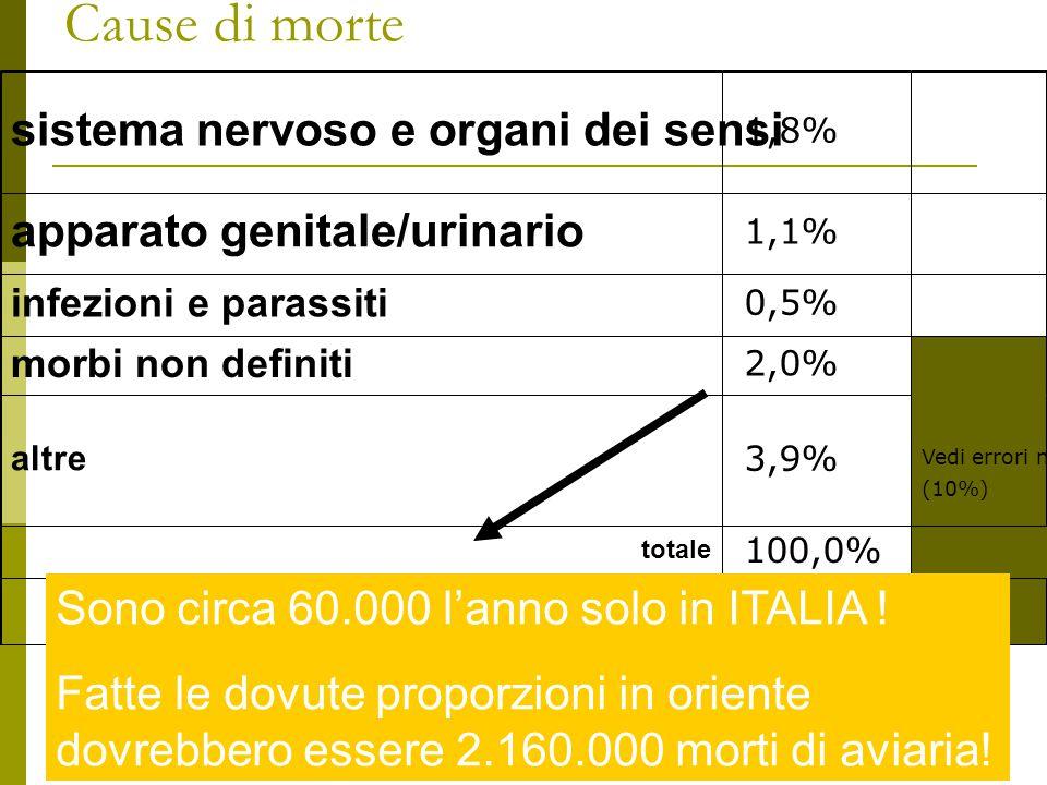 Cause di morte sistema nervoso e organi dei sensi 1,8% apparato genitale/urinario 1,1% infezioni e parassiti 0,5% morbi non definiti 2,0% Vedi errori medici da sommare a quelli delle categorie (10%) altre 3,9% totale 100,0% Sono circa 60.000 l'anno solo in ITALIA .