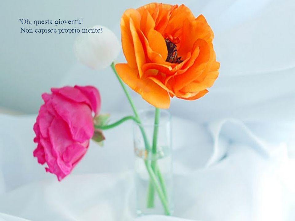 """""""Per me sono tutte uguali"""" rispose il fiore """"L'importante è che faccia caldo, sennò corro il rischio di appassire prima del tempo!"""""""