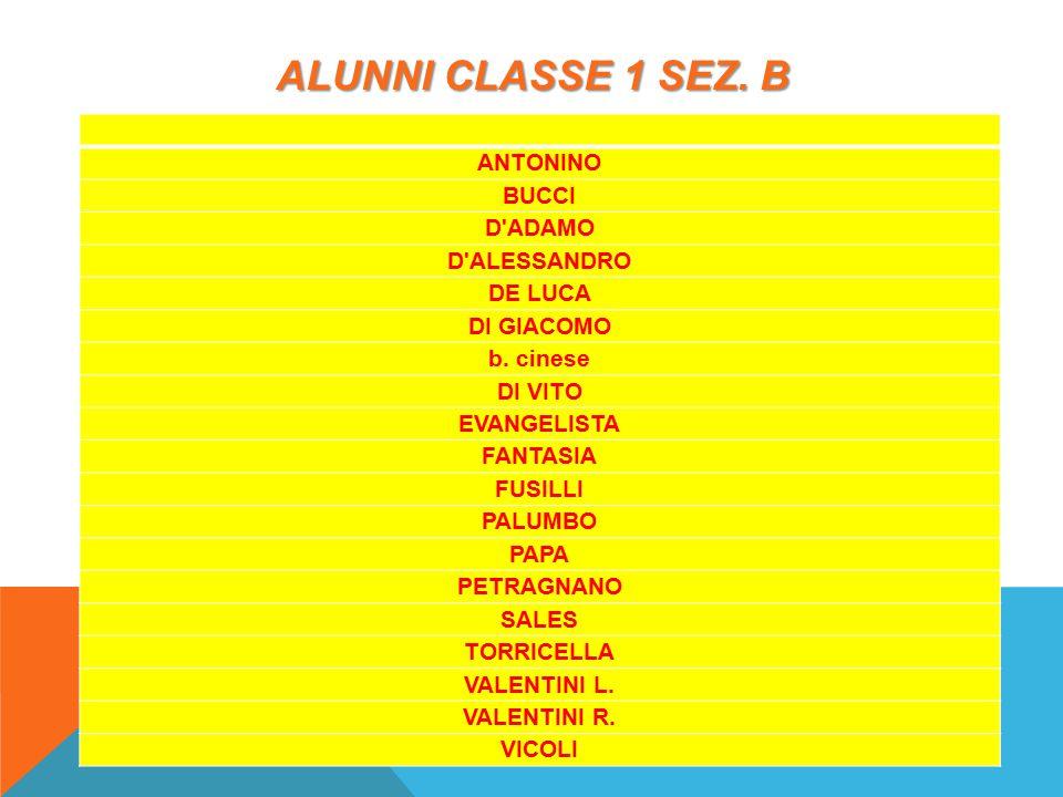 ALUNNI CLASSE 1 SEZ. B ANTONINO BUCCI D ADAMO D ALESSANDRO DE LUCA DI GIACOMO b.