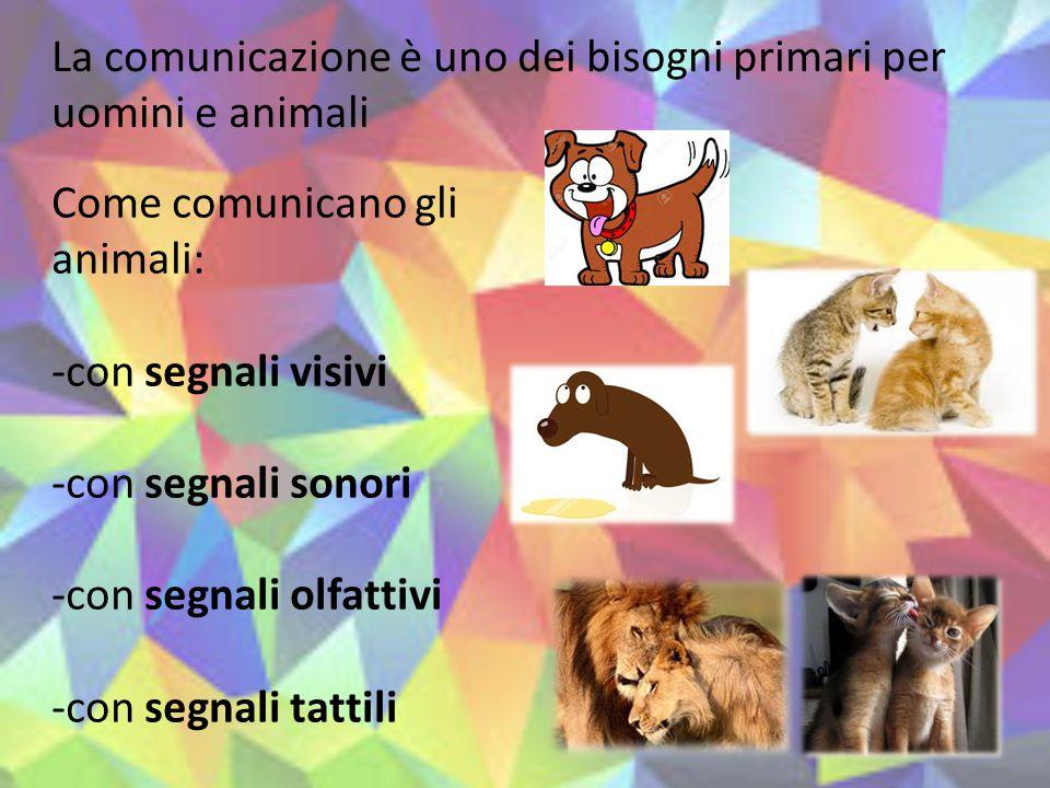 La comunicazione è uno dei bisogni primari per uomini e animali Come comunicano gli animali: -con segnali visivi -con segnali sonori -con segnali olfa