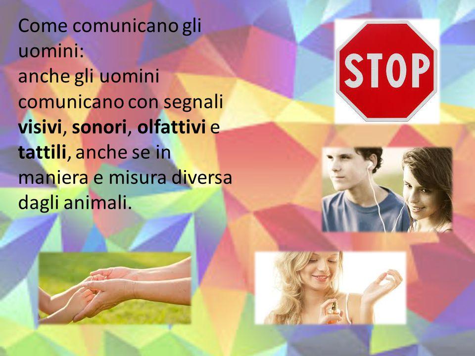Come comunicano gli uomini: anche gli uomini comunicano con segnali visivi, sonori, olfattivi e tattili, anche se in maniera e misura diversa dagli an