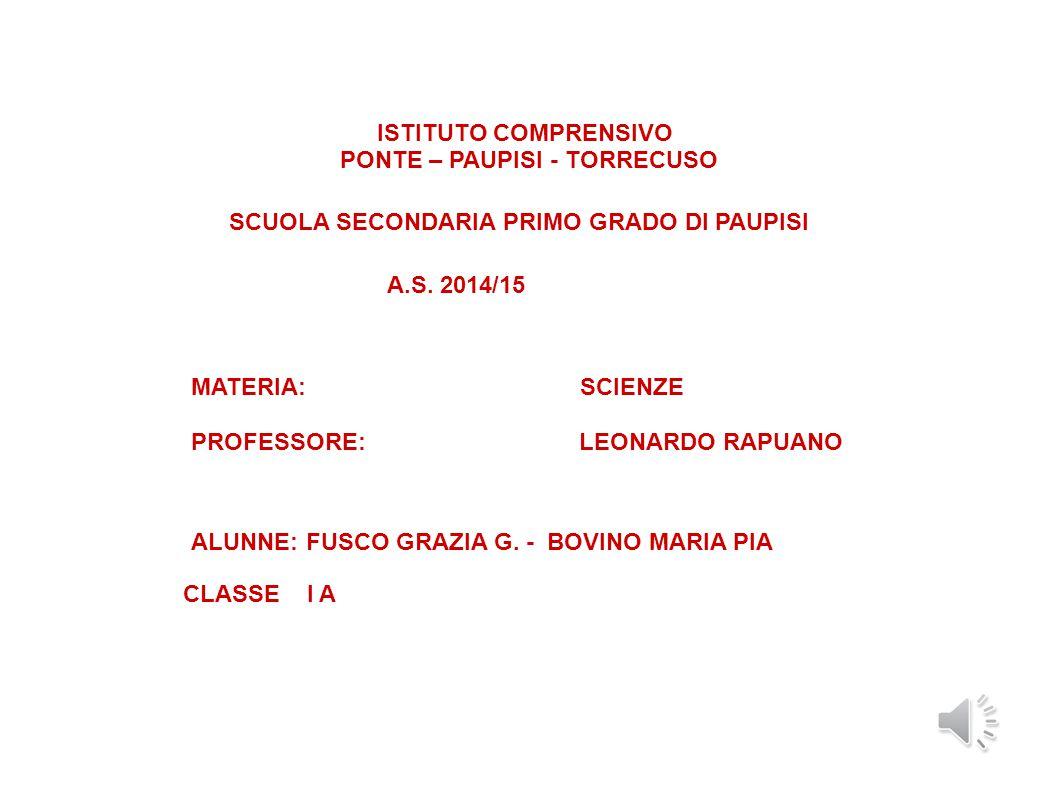ISTITUTO COMPRENSIVO PONTE – PAUPISI - TORRECUSO SCUOLA SECONDARIA PRIMO GRADO DI PAUPISI A.S.