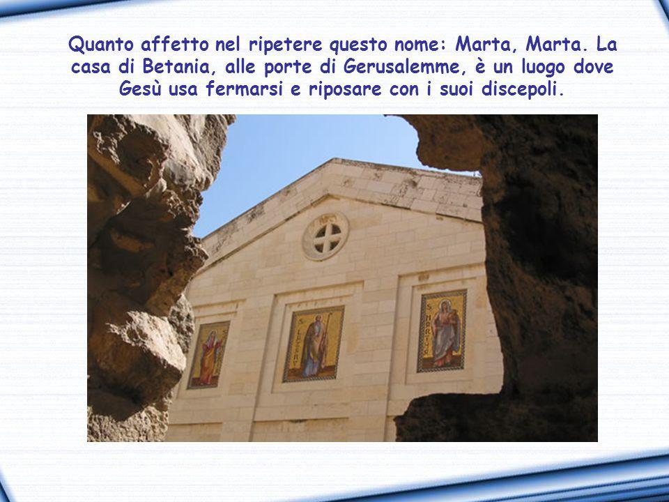 Marta, Marta, tu ti affanni e ti agiti per molte cose, ma di una cosa sola c'è bisogno (Lc 10, 41-42).
