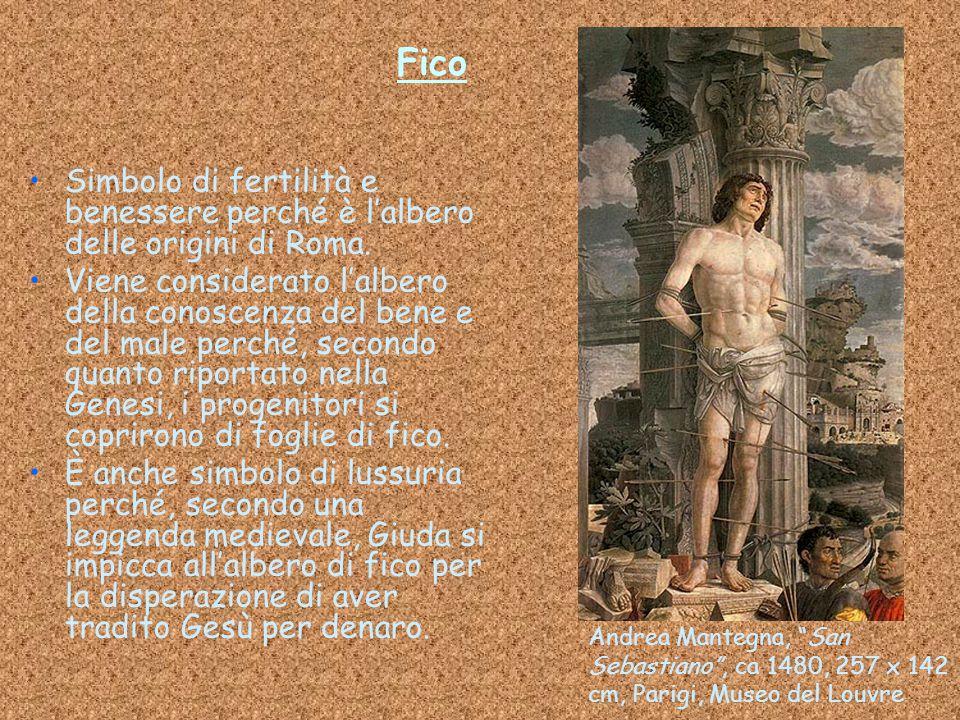 Fico Simbolo di fertilità e benessere perché è l'albero delle origini di Roma. Viene considerato l'albero della conoscenza del bene e del male perché,