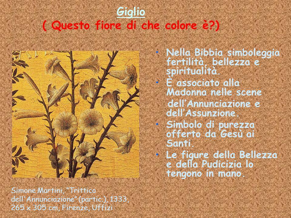 Giglio ( Questo fiore di che colore è?) Nella Bibbia simboleggia fertilità, bellezza e spiritualità. È associato alla Madonna nelle scene dell'Annunci