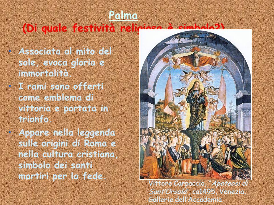 Palma (Di quale festività religiosa è simbolo?) Associata al mito del sole, evoca gloria e immortalità. I rami sono offerti come emblema di vittoria e