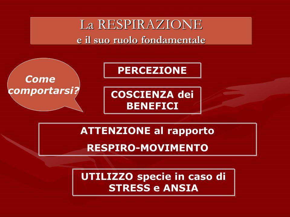 La RESPIRAZIONE e il suo ruolo fondamentale PERCEZIONE COSCIENZA dei BENEFICI ATTENZIONE al rapporto RESPIRO-MOVIMENTO UTILIZZO specie in caso di STRESS e ANSIA Come comportarsi