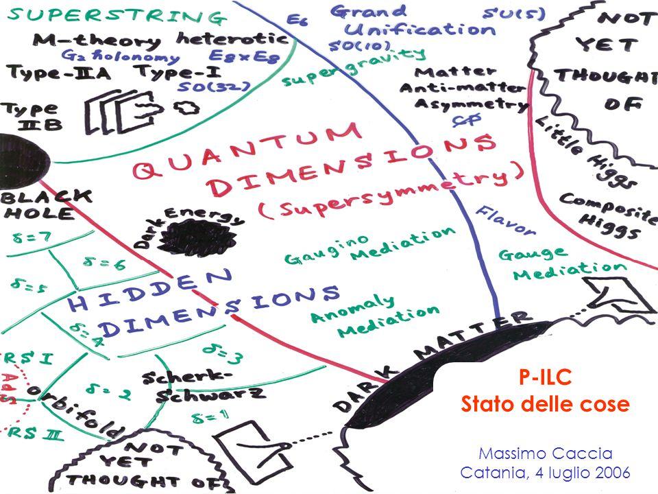 P-ILC Stato delle cose Massimo Caccia Catania, 4 luglio 2006