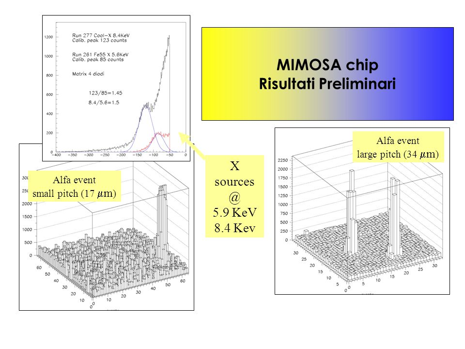 Alfa event small pitch (17  m ) MIMOSA chip Risultati Preliminari Alfa event large pitch (34  m ) X sources @ 5.9 KeV 8.4 Kev