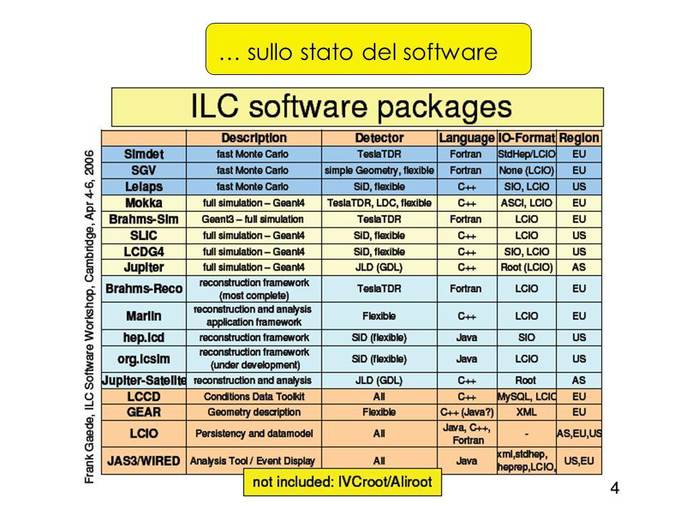 … sullo stato del software