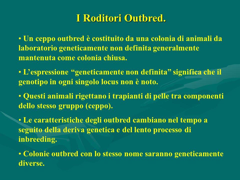 I Roditori Outbred. Un ceppo outbred è costituito da una colonia di animali da laboratorio geneticamente non definita generalmente mantenuta come colo