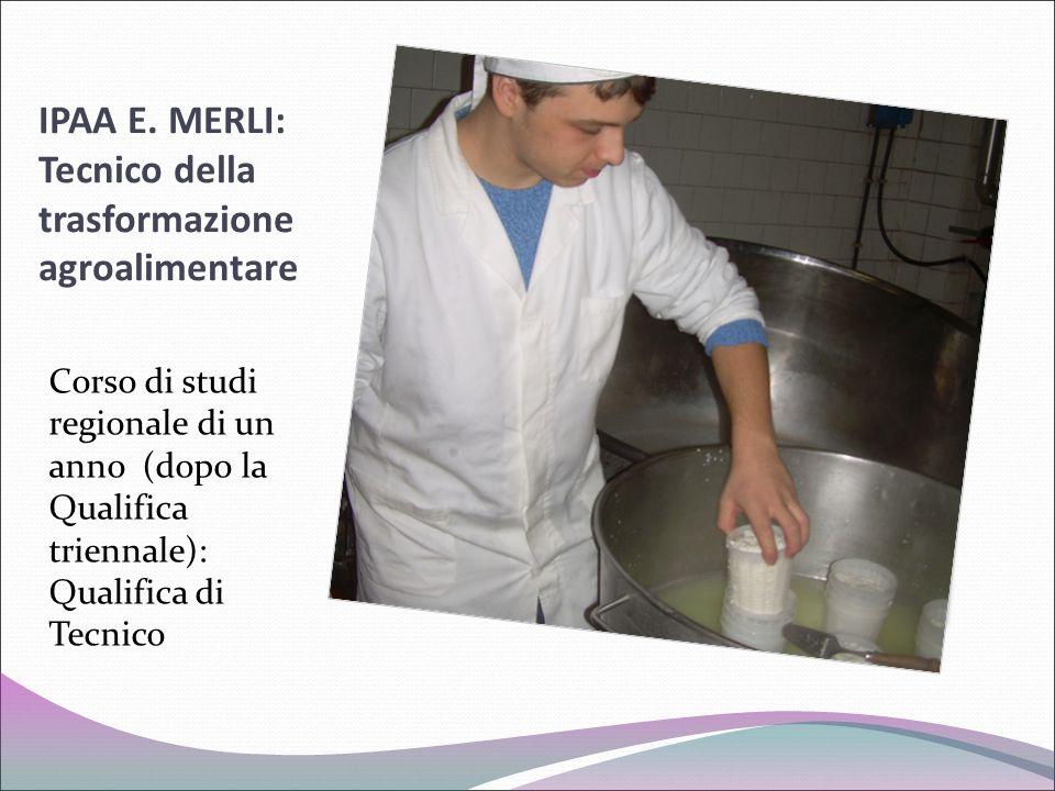 IPAA E. MERLI: Tecnico della trasformazione agroalimentare Corso di studi regionale di un anno (dopo la Qualifica triennale): Qualifica di Tecnico