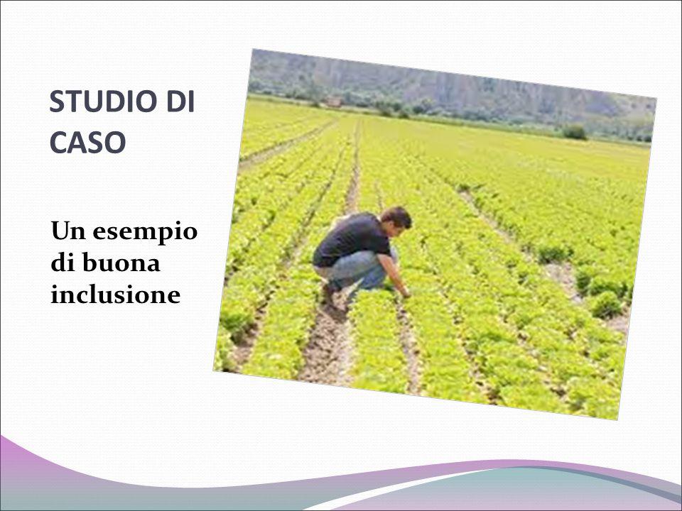 STUDIO DI CASO Un esempio di buona inclusione