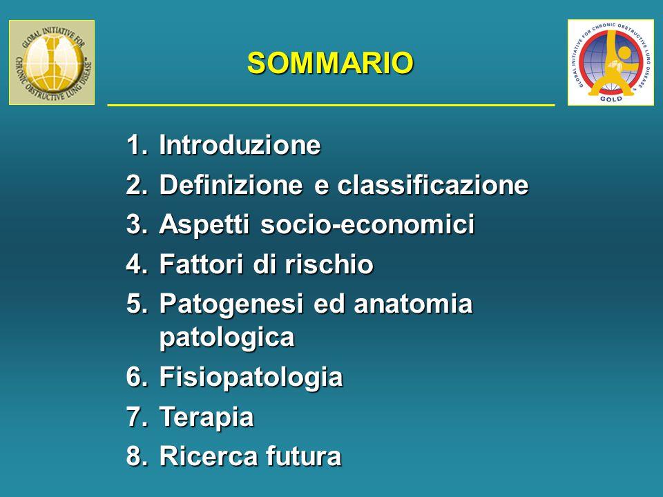 SOMMARIO 1.Introduzione 2.Definizione e classificazione 3.Aspetti socio-economici 4.Fattori di rischio 5.Patogenesi ed anatomia patologica 6.Fisiopatologia 7.Terapia 8.Ricerca futura
