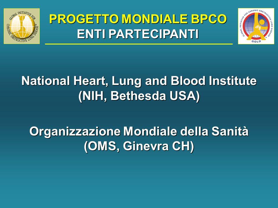 PROGETTO MONDIALE BPCO COMMISSIONE ESECUTIVA R.Pauwels (B) – Presidente S.