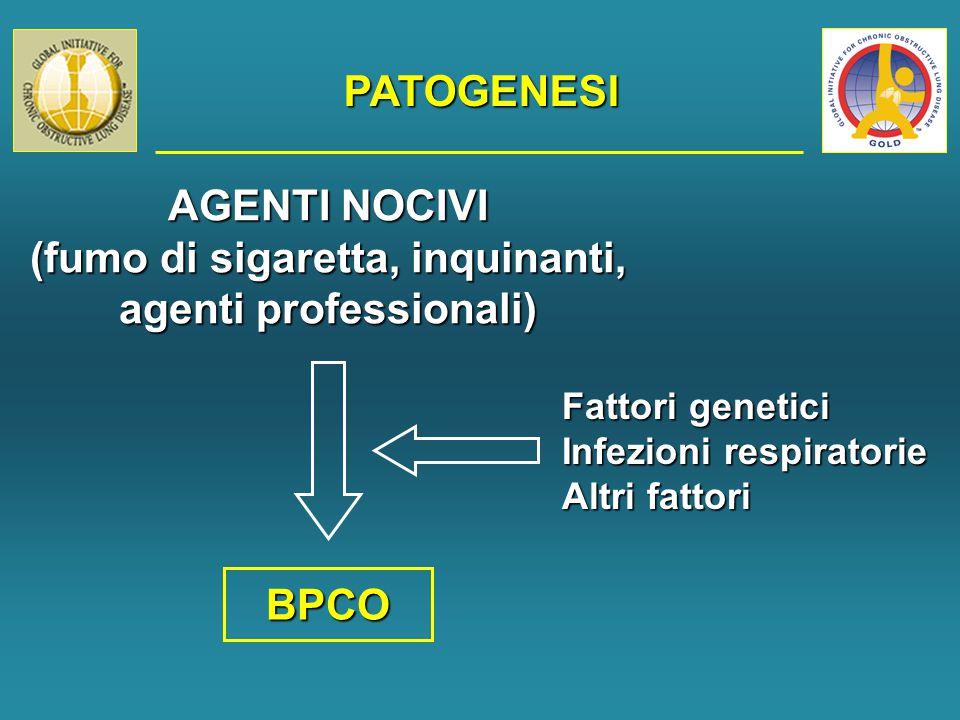 PATOGENESI AGENTI NOCIVI (fumo di sigaretta, inquinanti, agenti professionali) BPCO Fattori genetici Infezioni respiratorie Altri fattori