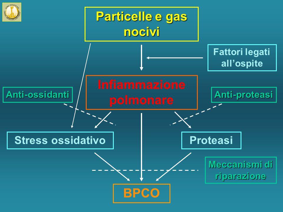 Particelle e gas nocivi Infiammazione polmonare BPCO Stress ossidativoProteasi Fattori legati all'ospite Anti-ossidantiAnti-proteasi Meccanismi di riparazione