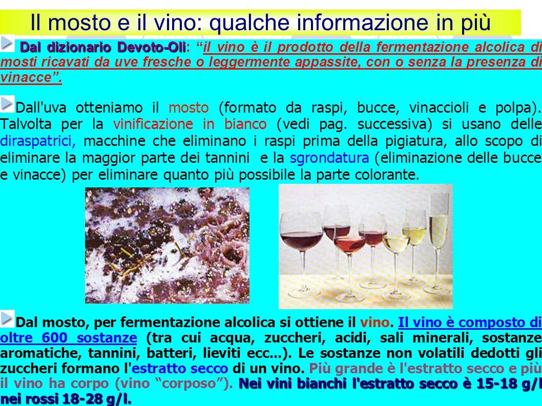 Il mosto e il vino: qualche informazione in più Dal dizionario Devoto-Oli Dal dizionario Devoto-Oli: il vino è il prodotto della fermentazione alcolica di mosti ricavati da uve fresche o leggermente appassite, con o senza la presenza di vinacce .