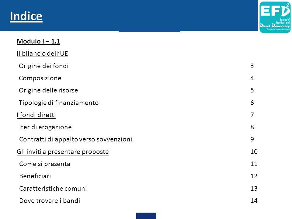 Indice Modulo I – 1.1 Il bilancio dell'UE -Origine dei fondi3 -Composizione4 -Origine delle risorse5 -Tipologie di finanziamento6 I fondi diretti7 Iter di erogazione8 Contratti di appalto verso sovvenzioni9 Gli inviti a presentare proposte10 Come si presenta11 Beneficiari12 Caratteristiche comuni13 Dove trovare i bandi14