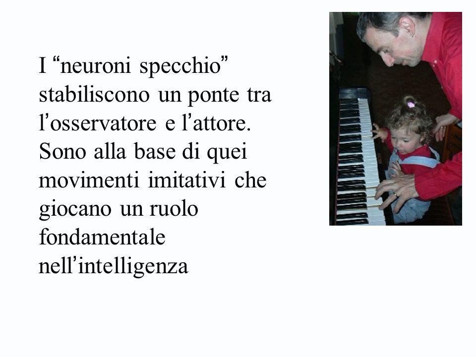"""I """" neuroni specchio """" stabiliscono un ponte tra l ' osservatore e l ' attore. Sono alla base di quei movimenti imitativi che giocano un ruolo fondame"""