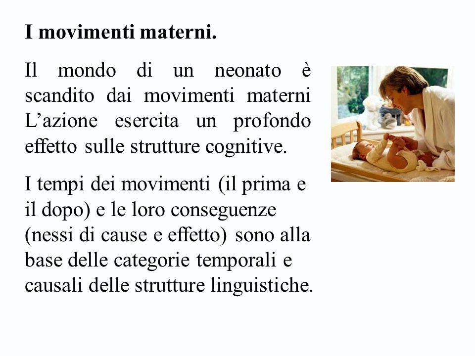 I movimenti materni. Il mondo di un neonato è scandito dai movimenti materni L'azione esercita un profondo effetto sulle strutture cognitive. I tempi