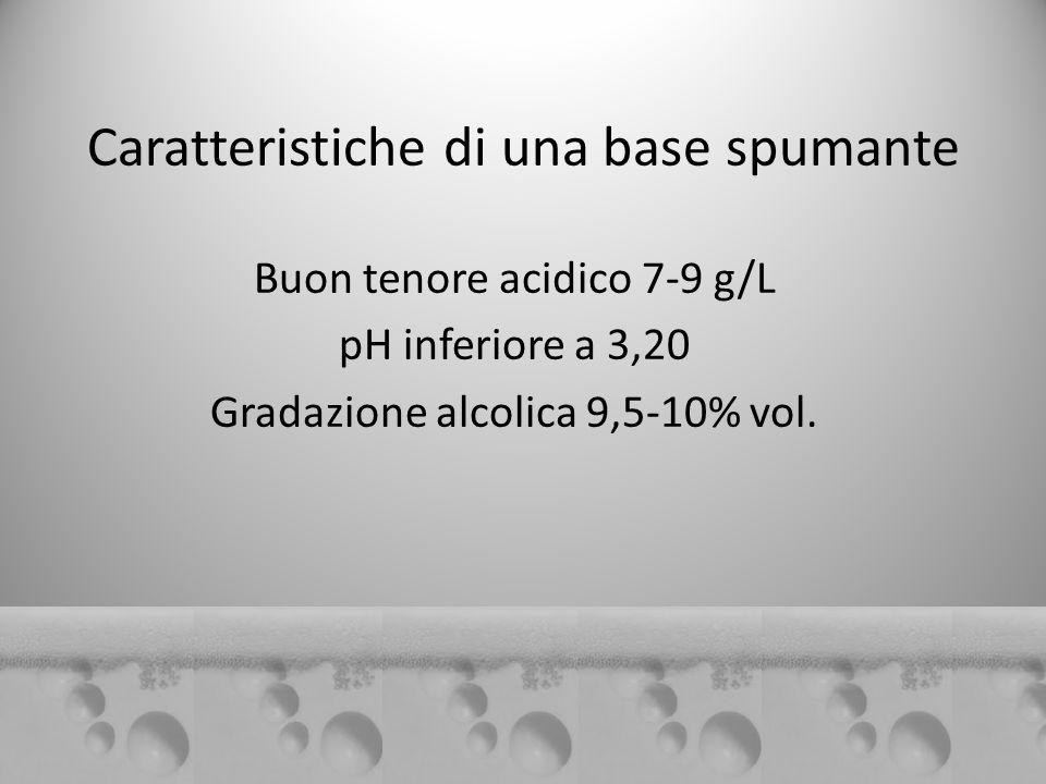Caratteristiche di una base spumante Buon tenore acidico 7-9 g/L pH inferiore a 3,20 Gradazione alcolica 9,5-10% vol.