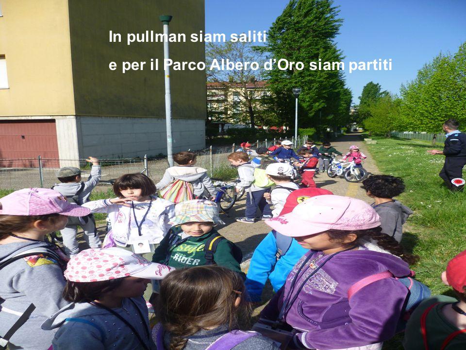 In pullman siam saliti e per il Parco Albero d'Oro siam partiti
