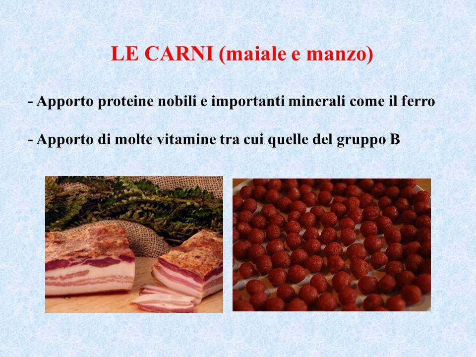 LE CARNI (maiale e manzo) - Apporto proteine nobili e importanti minerali come il ferro - Apporto di molte vitamine tra cui quelle del gruppo B
