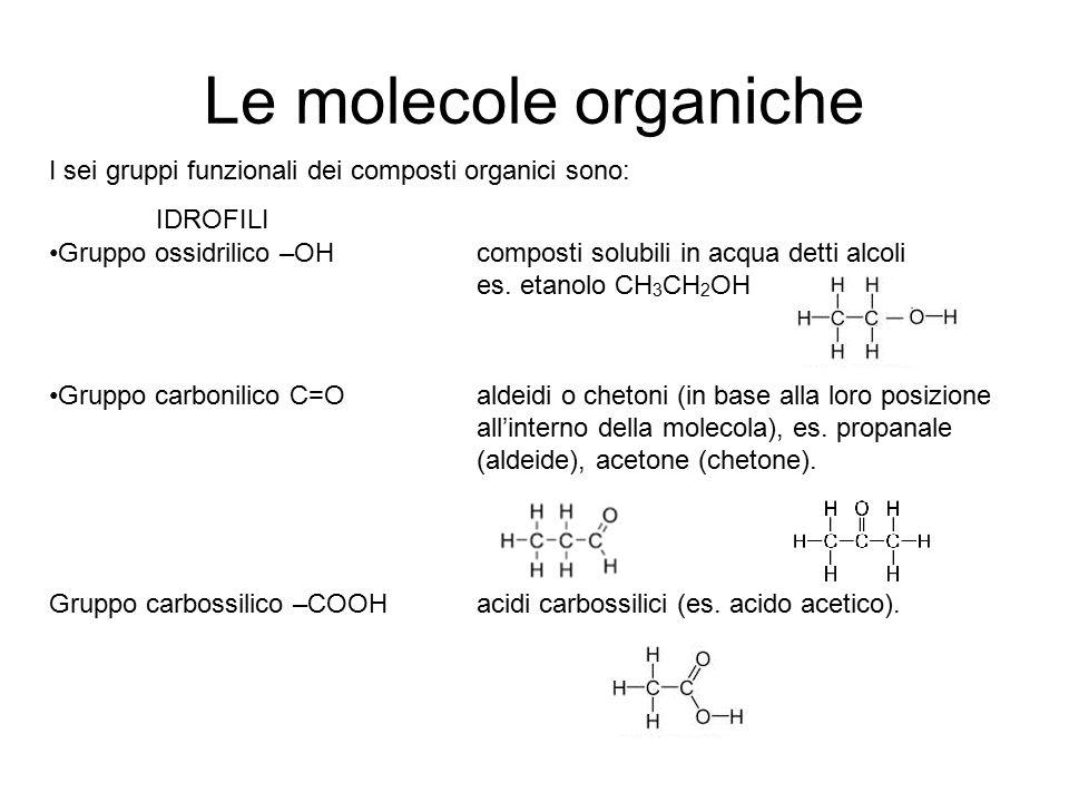 Le molecole organiche I sei gruppi funzionali dei composti organici sono: IDROFILI Gruppo ossidrilico –OHcomposti solubili in acqua detti alcoli es. e