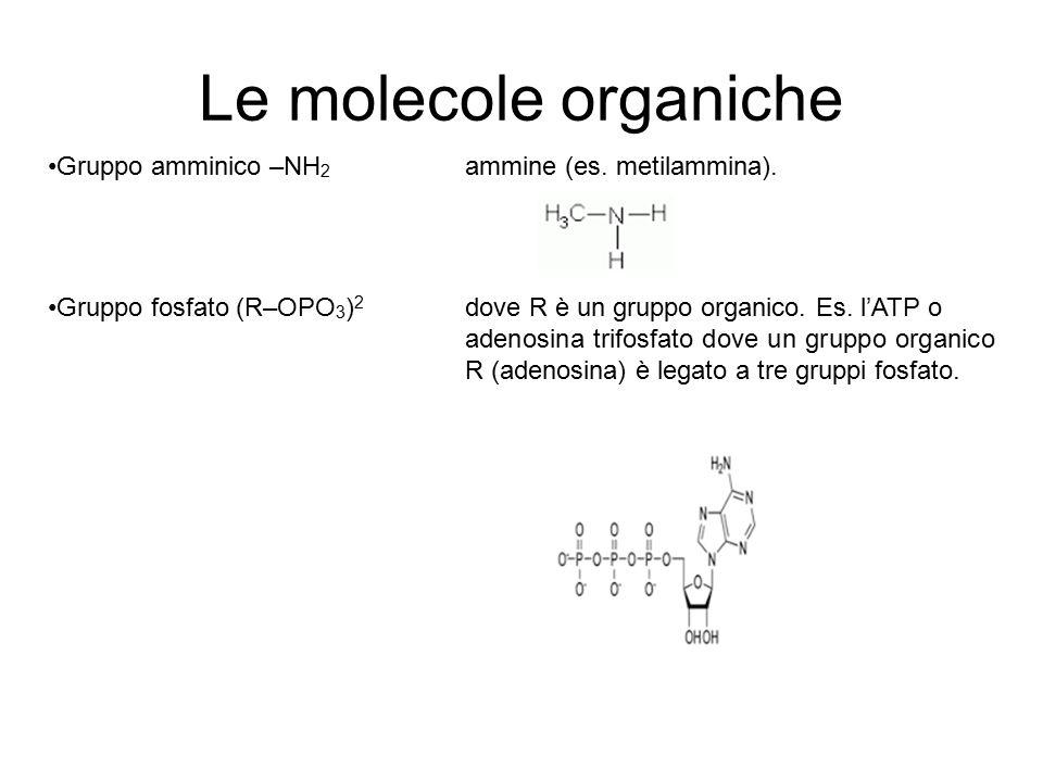 Le molecole organiche Gruppo amminico –NH 2 ammine (es. metilammina). Gruppo fosfato (R–OPO 3 ) 2 dove R è un gruppo organico. Es. l'ATP o adenosina t