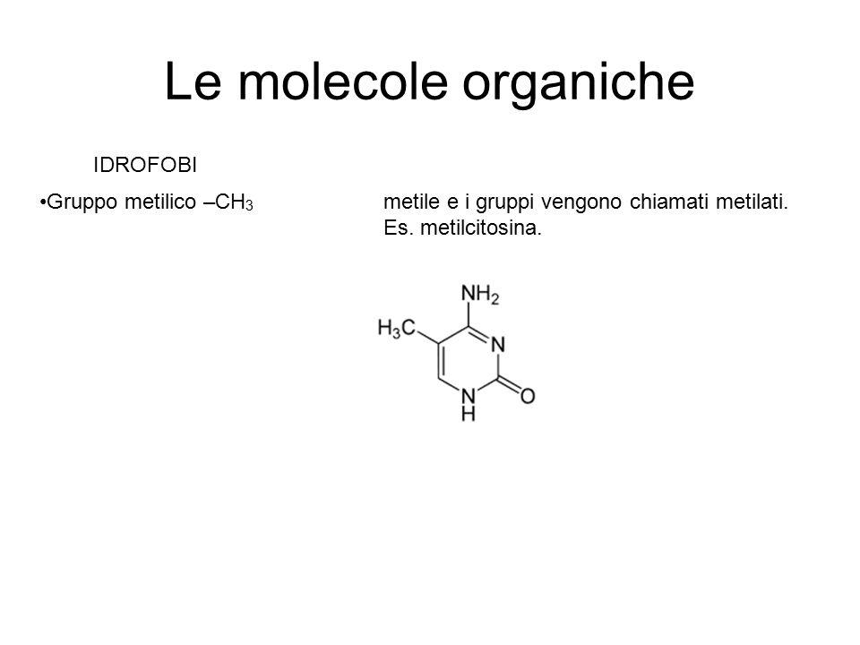 Le molecole organiche IDROFOBI Gruppo metilico –CH 3 metile e i gruppi vengono chiamati metilati. Es. metilcitosina.