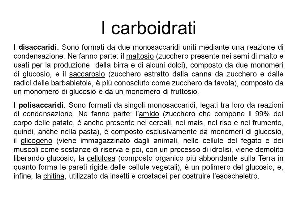 I carboidrati I disaccaridi. Sono formati da due monosaccaridi uniti mediante una reazione di condensazione. Ne fanno parte: il maltosio (zucchero pre