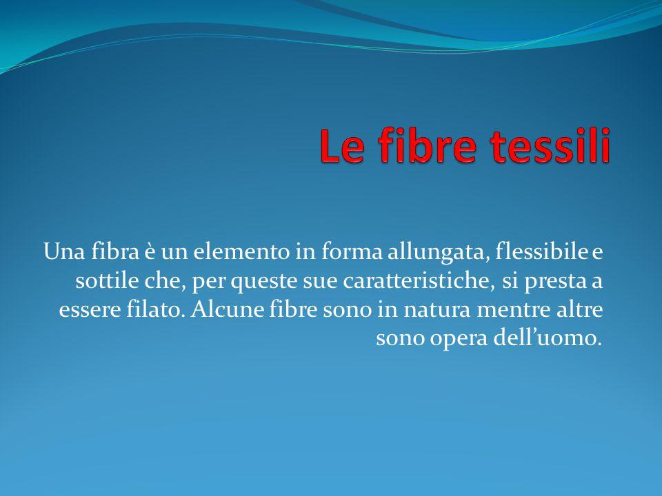 Una fibra è un elemento in forma allungata, flessibile e sottile che, per queste sue caratteristiche, si presta a essere filato. Alcune fibre sono in