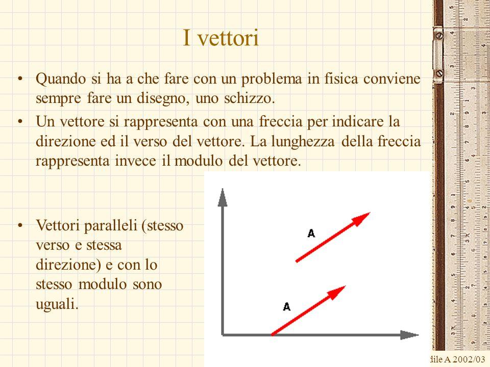 G.M. - Edile A 2002/03 I vettori Quando si ha a che fare con un problema in fisica conviene sempre fare un disegno, uno schizzo. Un vettore si rappres